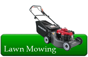 Image gallery mowing service for Local lawn care services